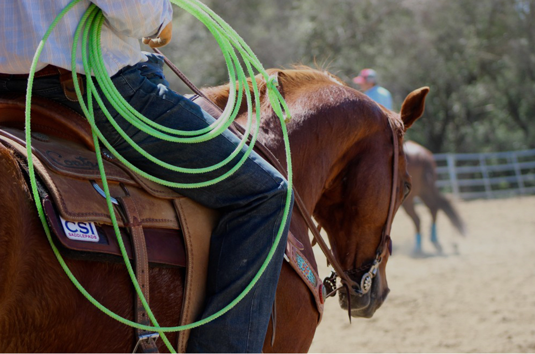 CSI Saddle Pads is committed to educating horse owners on better saddle fit.