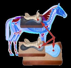 The CSI Flex-Plate® within theCSI Saddle Pad's Horse Saddle Pad Pressure Points